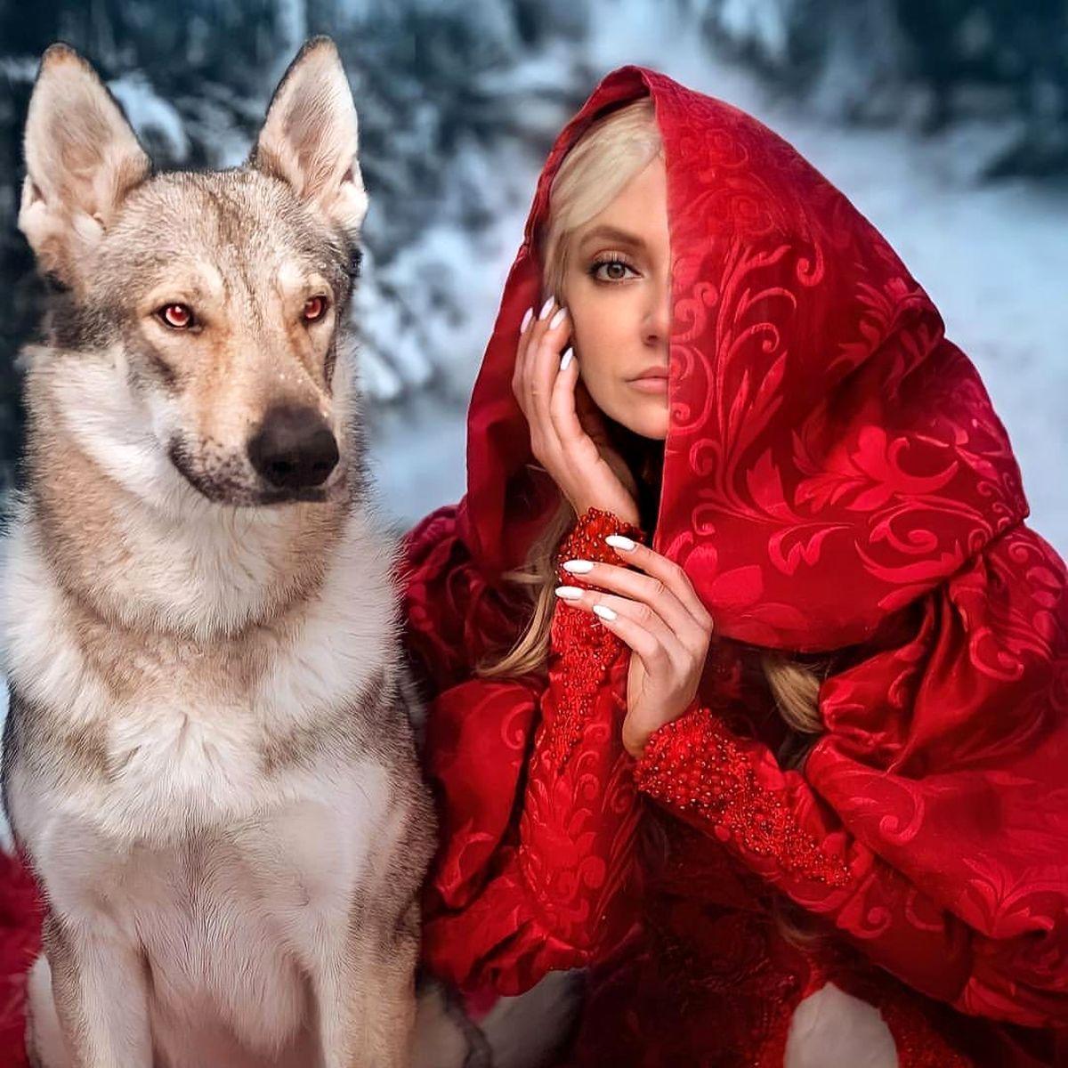 عکس مهناز افشار با لباس قرمز و سگی وحشتناک ! +عکس