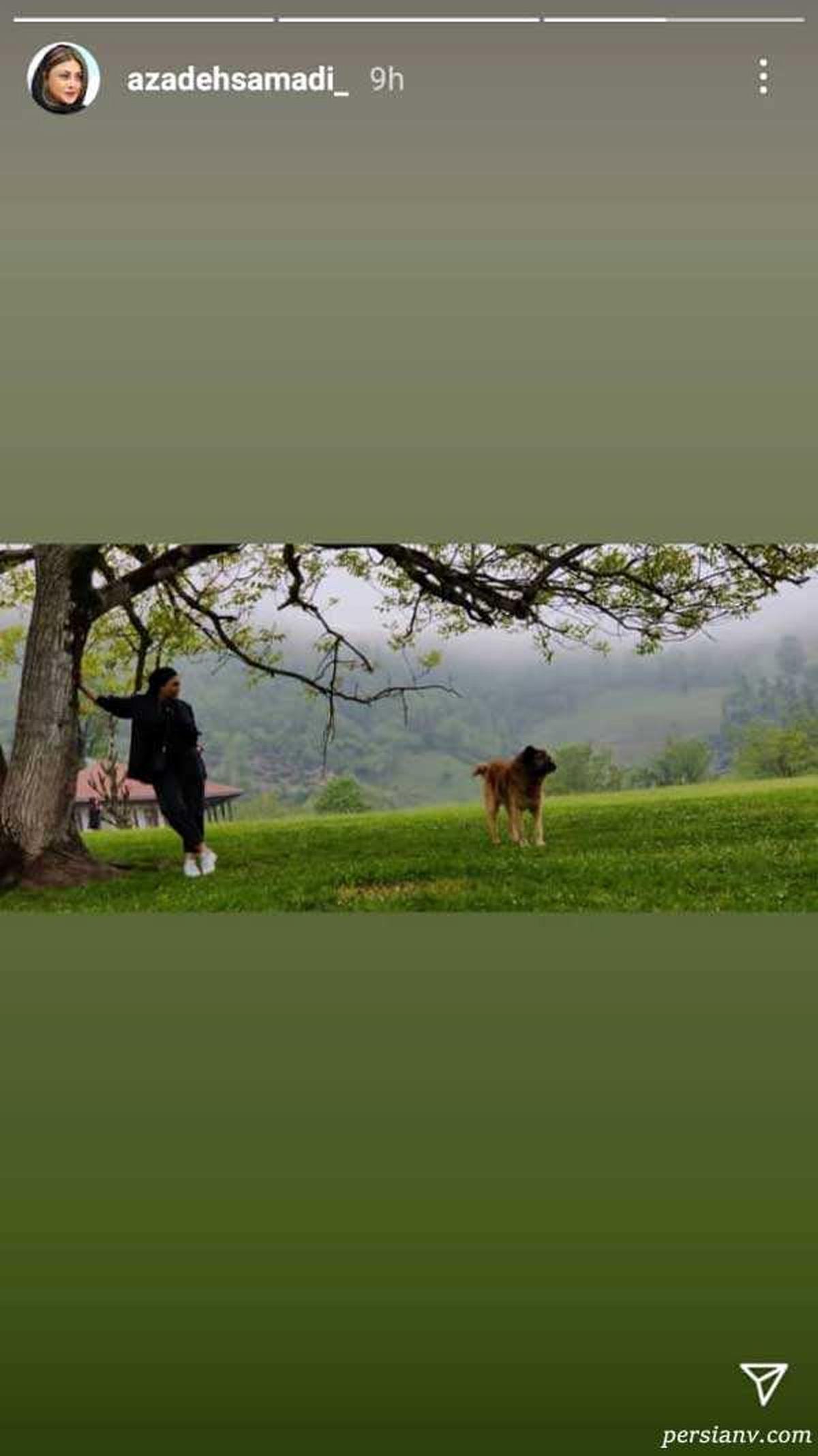 شلوار کوتاه آزاده صمدی با سگ غول پیکرش+عکس